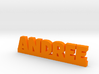 ANDREE Lucky 3d printed