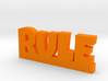 RULE Lucky 3d printed