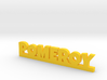 POMEROY Lucky 3d printed
