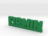 FIRMIN Lucky 3d printed