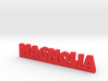 MAGNOLIA Lucky 3d printed