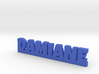 DAMIANE Lucky 3d printed