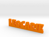 LEOCADIE Lucky 3d printed