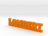 LAMBERT Lucky 3d printed