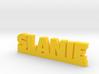 SLANIE Lucky 3d printed
