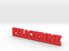 FELICIENNE Lucky 3d printed