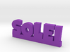 SOLEI Lucky 3d printed