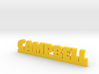 CAMPBELL Lucky 3d printed