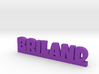 BRILAND Lucky 3d printed