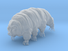 Tardigrade Water Bear Moss Piglet 3inch detailed 3d printed