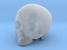 Skull Top scale 1/6 3d printed