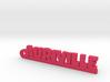 AURIVILLE Keychain Lucky 3d printed