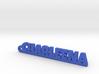 CHARLEENA Keychain Lucky 3d printed