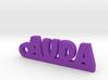 AUDA Keychain Lucky 3d printed