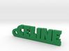 CELINE Keychain Lucky 3d printed