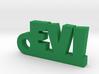 EVI Keychain Lucky 3d printed