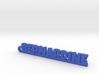 BERNARDINE Keychain Lucky 3d printed