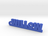 WILLOW Keychain Lucky 3d printed