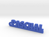 PASCHAL Keychain Lucky 3d printed
