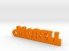 MORELL Keychain Lucky 3d printed