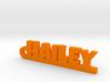 HAILEY Keychain Lucky 3d printed