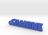 CHANINE Keychain Lucky 3d printed