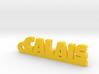 CALAIS Keychain Lucky 3d printed