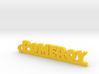 POMEROY Keychain Lucky 3d printed