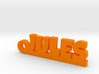 JULES Keychain Lucky 3d printed