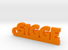 SIGGE Keychain Lucky 3d printed