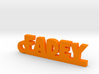FADEY Keychain Lucky 3d printed
