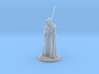 Raistlin Miniature 3d printed
