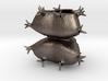 Staurastrum sculpture - Science Gift 3d printed