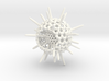 Spiky Spumellaria Sculpture - Science Gift 3d printed