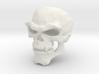 2000x skeletor 3d printed