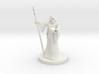 Elf Wizard 3 3d printed