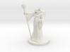 Dragonborn Sorceror v5 3d printed