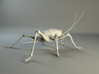 Articulated Cave Weta 3d printed