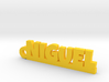 NIGUEL_keychain_Lucky 3d printed