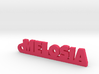 MELOSIA_keychain_Lucky 3d printed