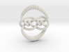 Knot 10₁₂₀ (Rope with detail) 3d printed