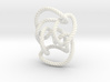 Knot 10₁₄₄ (Rope with detail) 3d printed