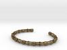 Skeletonema Diatom Bracelet  3d printed