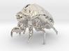 Cicada Nymph Molt Pendant 3d printed
