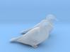 Ducks Mallard Sitting 3d printed