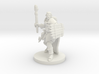 Male Human Druid with Lizard Totem 3d printed