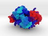 Nck-Interacting Kinase 3d printed