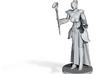 Half Elf Female Sorcerer 3d printed