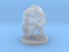 Turtlefolk Bard 3d printed