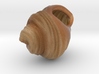 Sea shell (Full Color) 3d printed